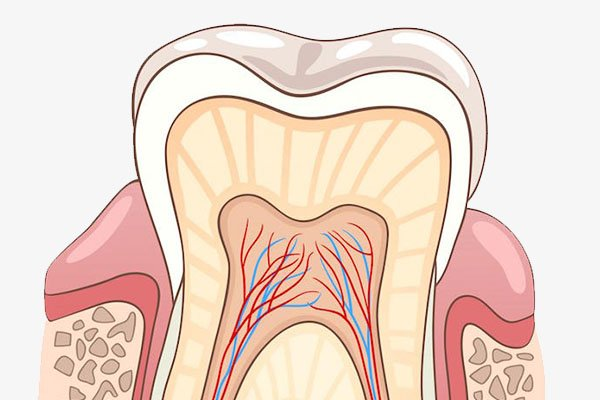 Root Canal Therapy – Do I Need It?